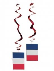 6 sospensioni metallizzate bandiera Francese