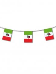 Ghirlanda di plastica Messico