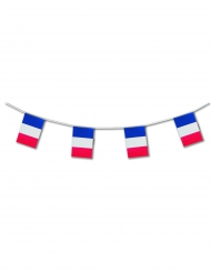 Ghirlanda con bandiere della Francia