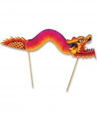 Stuzzicadenti dragone 24 x 66 cm