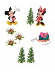 Decorazione per torta Topolino™ e Minnie™ 9 Pezzi