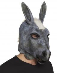 Maschera da asino in lattice