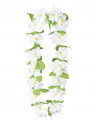 Collana di fiori bianchi per adulto
