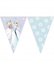 Ghirlanda 9 bandierine Frozen™