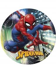 8 Piatti in cartone Spiderman™ 23 cm