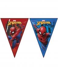 Ghirlanda festoni Spiderman™ 2.3 m