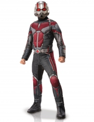 Costume Deluxe Ant-Man™ per adulto