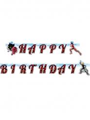 Ghirlanda Happy Birthday Ladybug™ 2 m