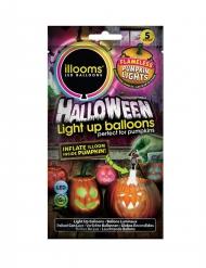 5 palloncini a led Illoms™ per Zucca di Halloween