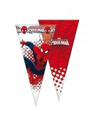 6 Sacchetti a forma di cono Spiderman™ 20x40 cm