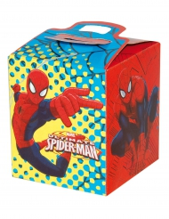 Scatola regalo in cartone Spiderman™