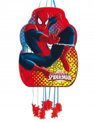 Pignatta Spiderman™ 36 x 46 cm