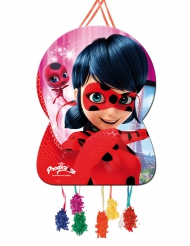 Pignatta Ladybug™ 46x65 cm