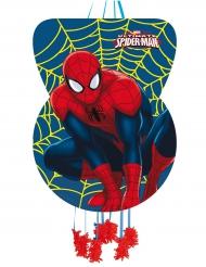 Pignatta in cartone Spiderman™ 46 x 65 cm
