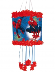 Pignatta Spiderman™ 20 x 30 cm