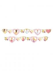 Ghirlanda premium in cartone Principesse Disney™