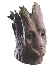 Maschera in lattice Groot I guardiani della Galassia™ Adulto