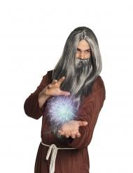 Parrucca e barba lunga grigia da mago per uomo