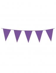 Ghirlanda di mini bandierine viola