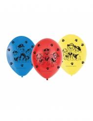 6 palloncini Paw patrol™ colorati