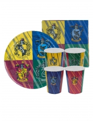 Kit per compleanno Harry Potter™