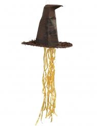 Pignatta Cappello Parlante Harry Potter™ 45 cm