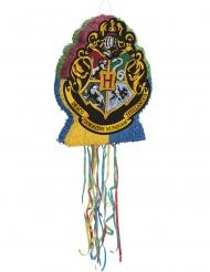 Pentolaccia Harry Potter