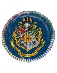 Palloncino alluminio Harry Potter™ 45 cm
