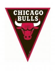 Ghirlanda bandierine Chicago Bulls™