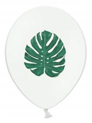 6 Palloncini in lattice foglia tropicale verde 30 cm