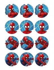 12 Decorazioni di amido per biscotti Spiderman™