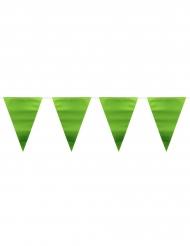 Ghirlanda bandierine verde metallizzato