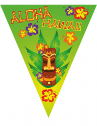 Ghirlanda bandierine Hawai