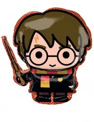 Palloncino alluminio Harry Potter™ 25cm