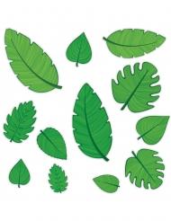 12 Ritagli in cartone foglie tropicali verdi 10 - 30 cm