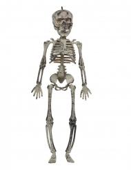 Decorazione da appendere scheletro da 30 cm