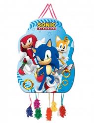 Piccola pignata Sonic™