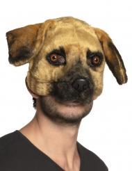 Maschera da cane con pelo per adulto