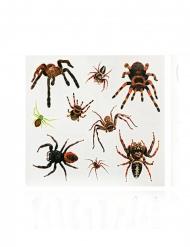 Finti tatuaggi ragni