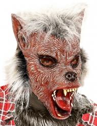 Maschera lupo mannaro con pelo bambino