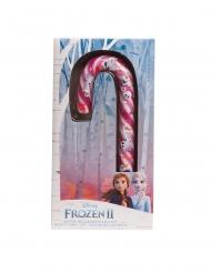 Bastoncino di zucchero Frozen 2™ 40 gr