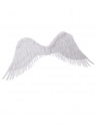 Ali da angelo bianche 94 x 29 cm