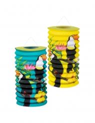 2 Lanterne di carta con tucano