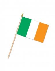 Bandiera irlandese 10 x 15 cm