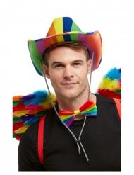Cappello da cowboy arcobaleno per adulto