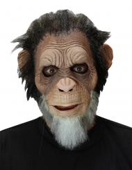Maschera vecchia scimmia adulto