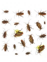 20 Adesivi scarafaggio