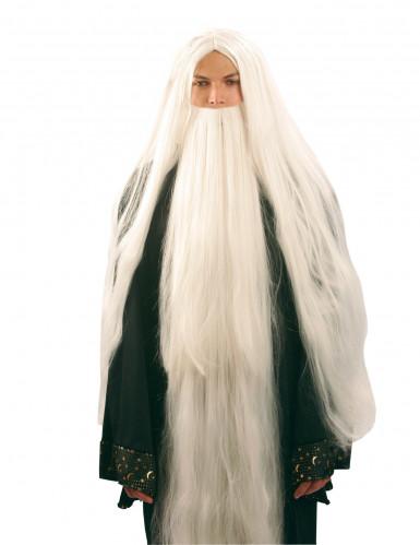 Parrucca e barba da mago uomo