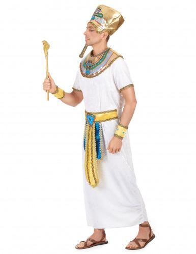 Costume re egizio uomo-1