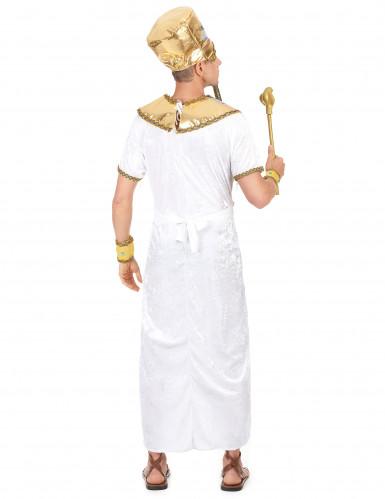 Costume re egizio uomo-2